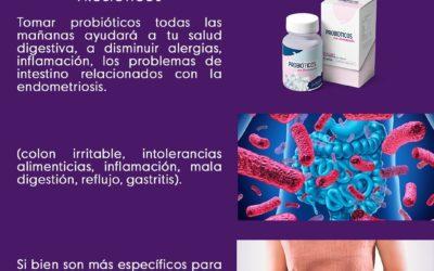 Suplementos para Endometriosis : Probióticos